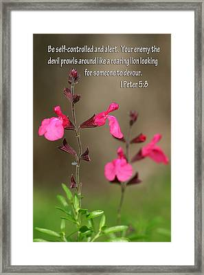 Little Pink Wildflowers With Scripture Framed Print by Linda Phelps