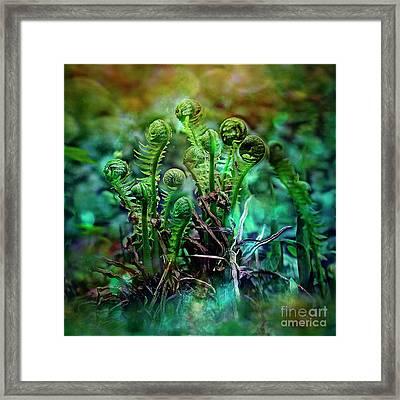 Little Planet Framed Print by Agnieszka Mlicka