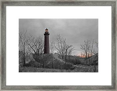 Little Point Sable Light Framed Print
