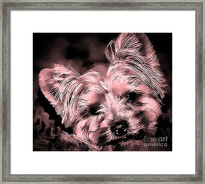 Framed Print featuring the photograph Little Powder Puff by Kathy Tarochione