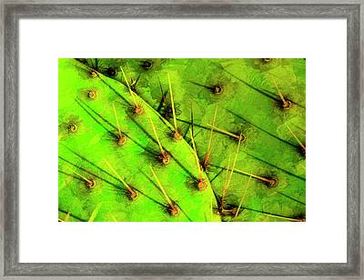 Prickly Pear Framed Print by Paul Wear