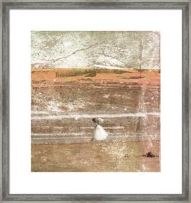 Little Princess Framed Print by Susanne Van Hulst