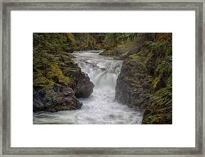 Little Qualicum Lower Falls Framed Print by Randy Hall