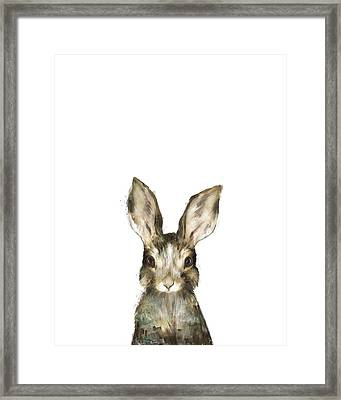 Little Rabbit Framed Print by Amy Hamilton