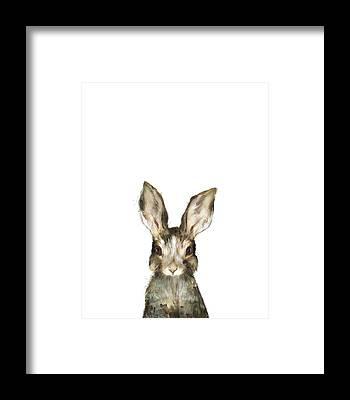 Bunny Framed Prints