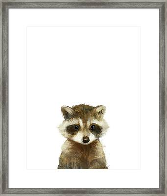 Little Raccoon Framed Print by Amy Hamilton