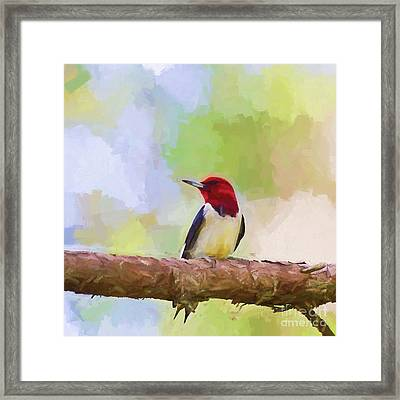 Little Red Head Framed Print