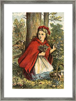 Little Red Riding Hood Gathering Flowers Framed Print by English School