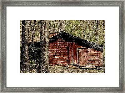 Little Red Shed Framed Print by Ginger Barritt