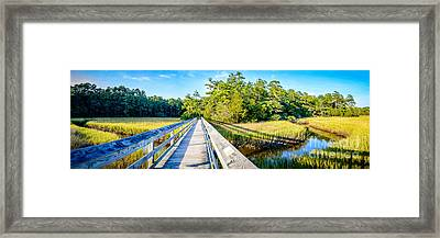 Little River Marsh Framed Print