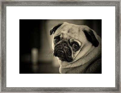 Little Sad Face Framed Print