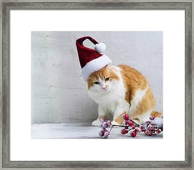 Little Santa Helper II Framed Print