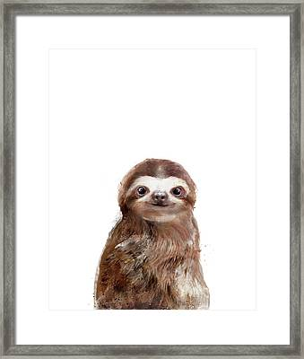 Little Sloth Framed Print by Amy Hamilton