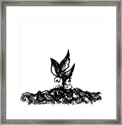Little Sprout Framed Print by Rachel Christine Nowicki