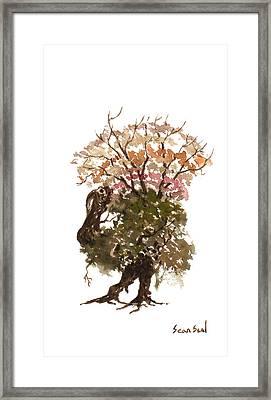 Little Tree 67 Framed Print by Sean Seal