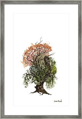 Little Tree 71 Framed Print