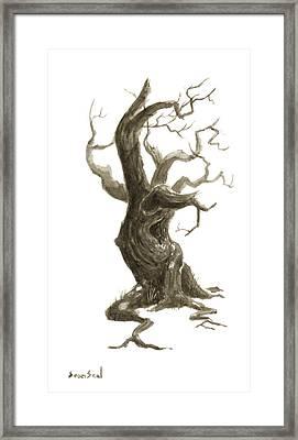 Little Tree 78 Framed Print by Sean Seal