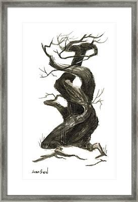 Little Tree 79 Framed Print by Sean Seal
