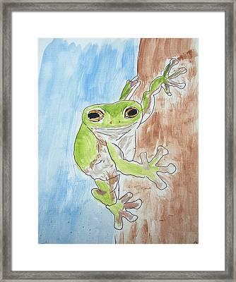 Little Tree Frog Framed Print by Jennifer Coleman