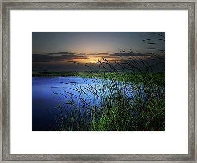Little Waters Framed Print