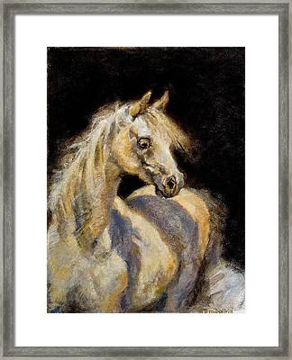 Little White Mare Framed Print