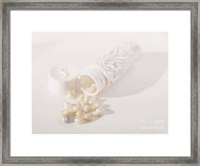 Framed Print featuring the photograph Little White Seashells by Cindy Garber Iverson