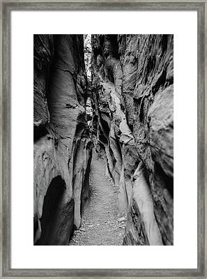Little Wild Horse Canyon Bw Framed Print