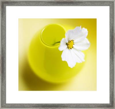Little Yellow Vase Framed Print by Rebecca Cozart