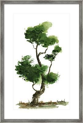 Little Zen Tree 145 Framed Print by Sean Seal