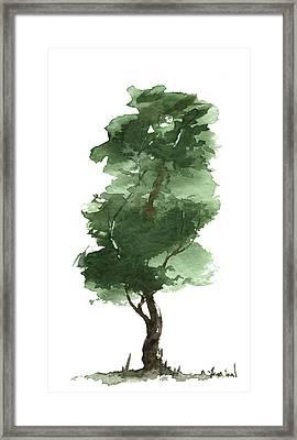 Little Zen Tree 161 Framed Print by Sean Seal