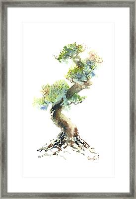 Little Zen Tree 1692 Framed Print by Sean Seal