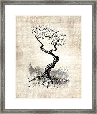 Little Zen Tree 1820 Framed Print by Sean Seal