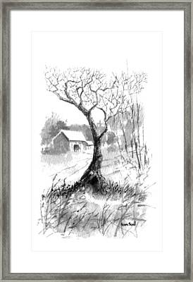 Little Zen Tree 1832 Framed Print by Sean Seal