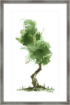 Little Zen Tree 187 Framed Print by Sean Seal