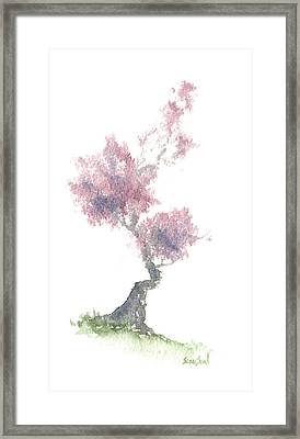 Little Zen Tree 1981 Framed Print by Sean Seal