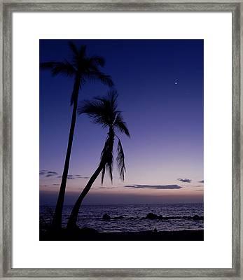 Live Aloha Framed Print