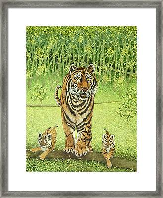 Live And Learn Framed Print by Pat Scott