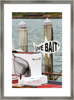 Live Bait Framed Print by Art Block Collections