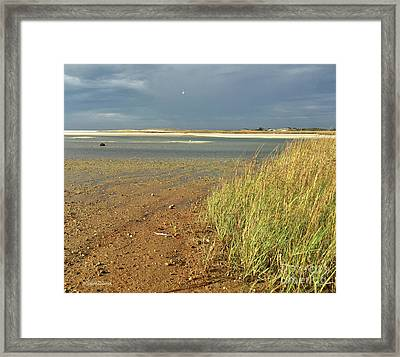 Live Each Day Framed Print by Michelle Wiarda