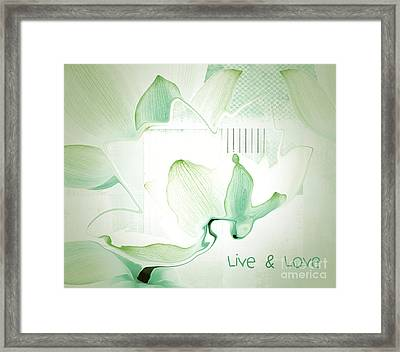 Live N Love - Absf12 Framed Print by Variance Collections