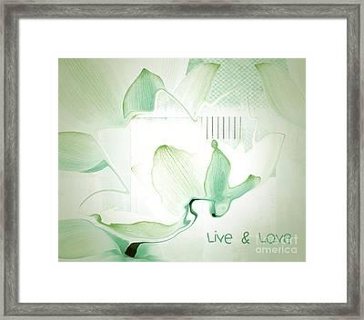 Live N Love - Absf12 Framed Print