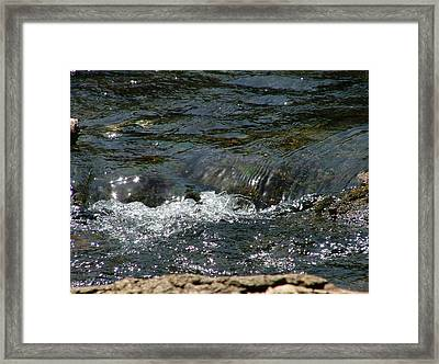 Live Water Framed Print