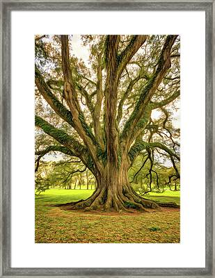 Living History - Paint Framed Print by Steve Harrington