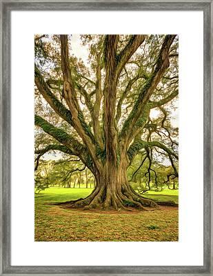 Living History - Paint Framed Print