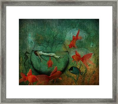 Living In A Fishbowl Framed Print by Terry Fleckney