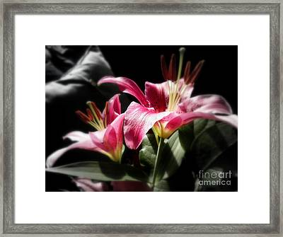 Living In Color Framed Print by Sian Lindemann
