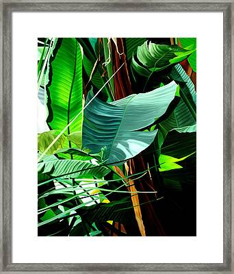 Living In Harmony Framed Print by Sunhee Kim Jung