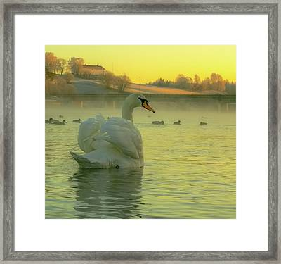 Living In Hope Framed Print