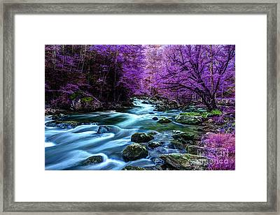 Living In Yesterday's Dream Framed Print by Michael Eingle