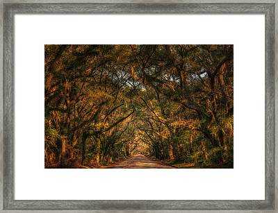 Living Legacies On Botany Bay Framed Print